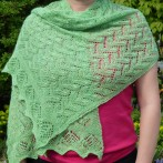 Shawl Challenge at my knitting guild