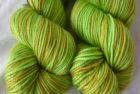 M/S DK – Michelle's Green